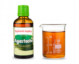 Agastache - bylinné kapky (tinktura) 50 ml